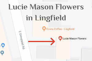 Location map for Lucy Mason Flowers in Lingfield